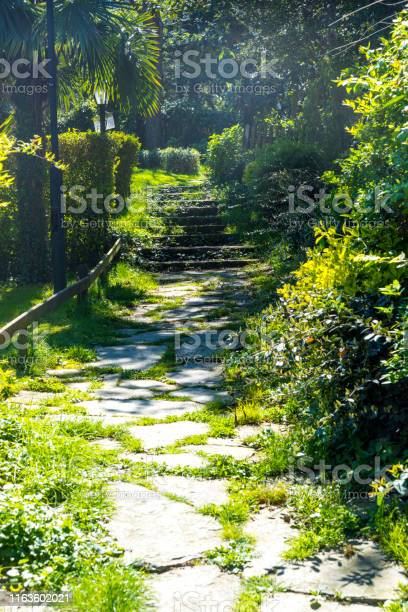 Photo of Cobblestone garden pathway