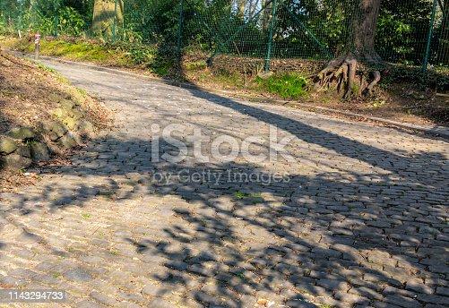 istock Cobblestone Road Detail 1143294733