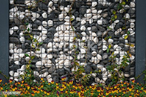 Wall of white,gray and black cobblestones fastened in metal grid with ivy climbing on the wall and yellow blooming flower,the pebble wall looks like the game of
