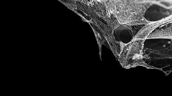 istock cobweb or spider web isolated on black background 640188026