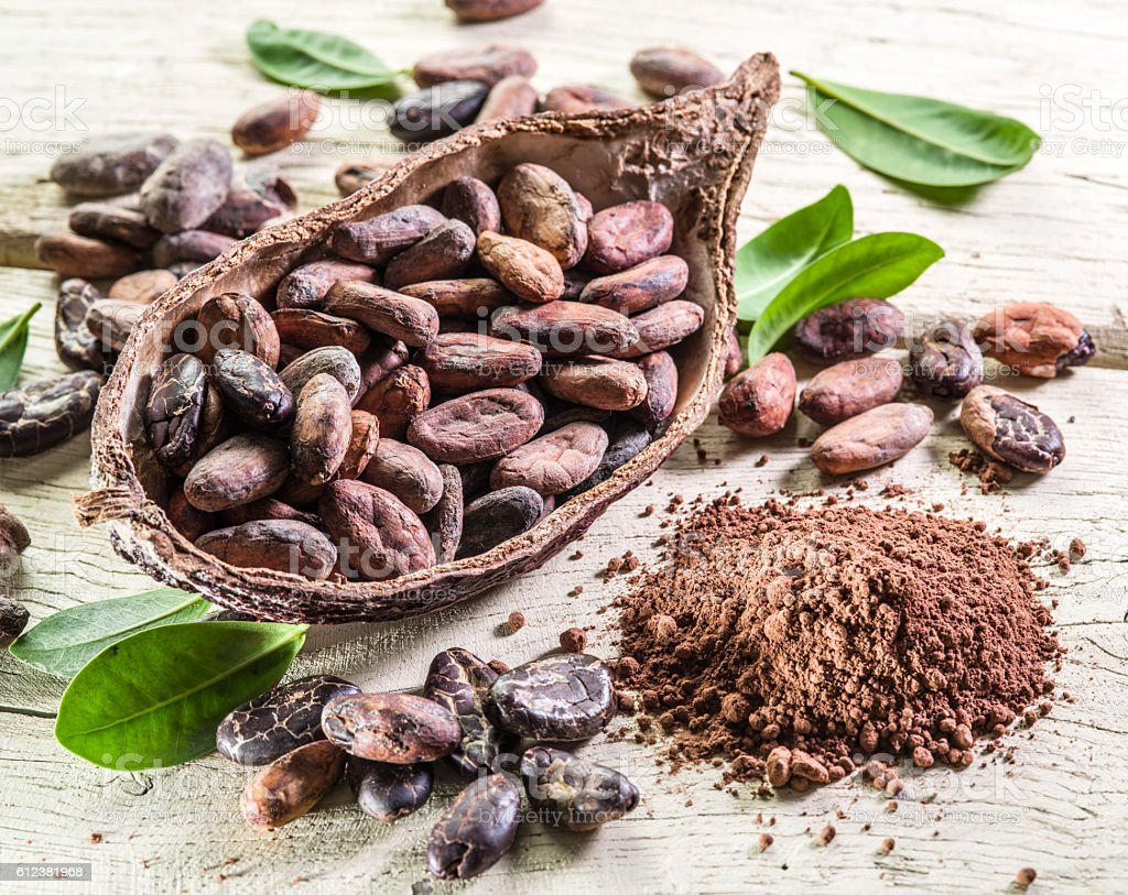 Cocao powder and cocao beans on the wooden table. stock photo