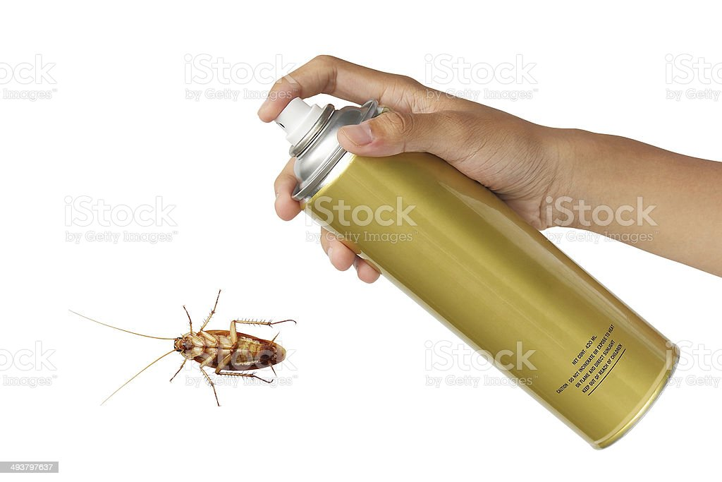Cockroach spray with spray cans isolated over white background stock photo