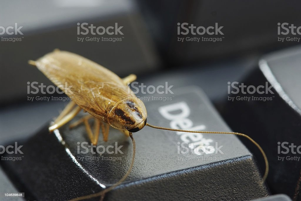 Cockroach standing on delete keyboard button stock photo
