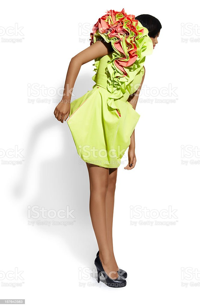 Cocktail Dress royalty-free stock photo