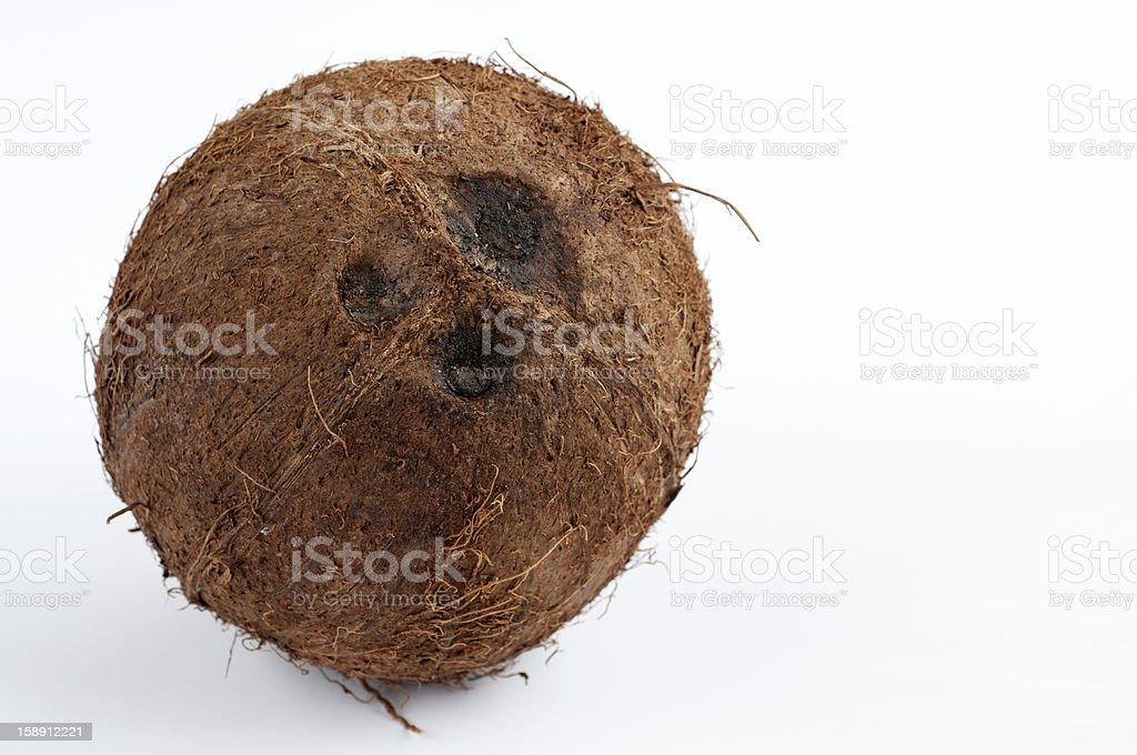 Coco nut royalty-free stock photo
