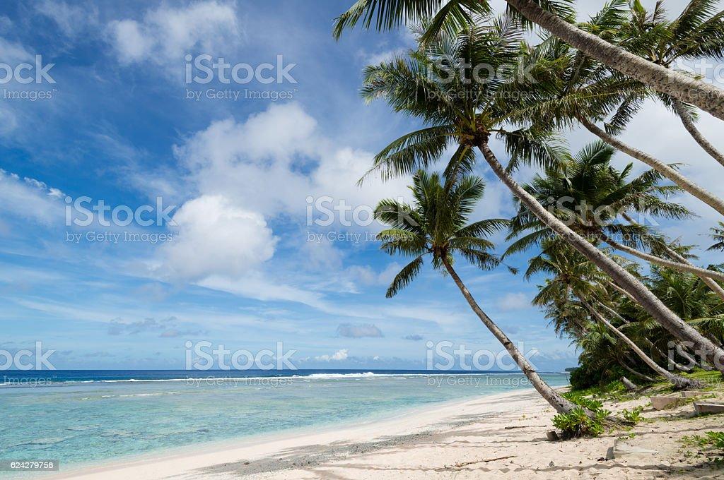 Coco Palm Garden Beach in Guam, USA stock photo