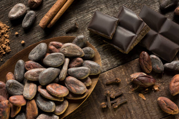 Cocoa and Cinnamon composition Cocoa and cinnamon composition on wooden surface, showing chocolate chunks, cocoa powder, cloves, cacao nibs and cinnamon stick. Dark background. Horizontal photography. Color image. No people. Studio shot. cocoa bean stock pictures, royalty-free photos & images
