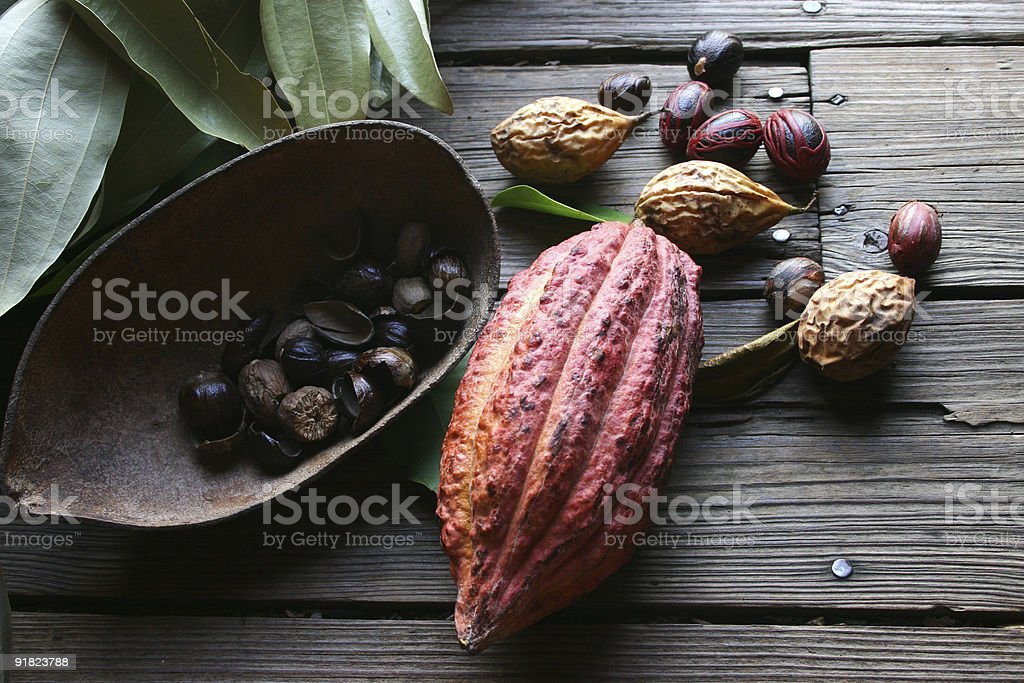 Cocoa bean and nutmeg royalty-free stock photo