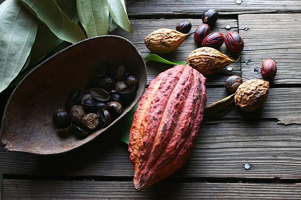 Cocoa bean and nutmeg stock photo