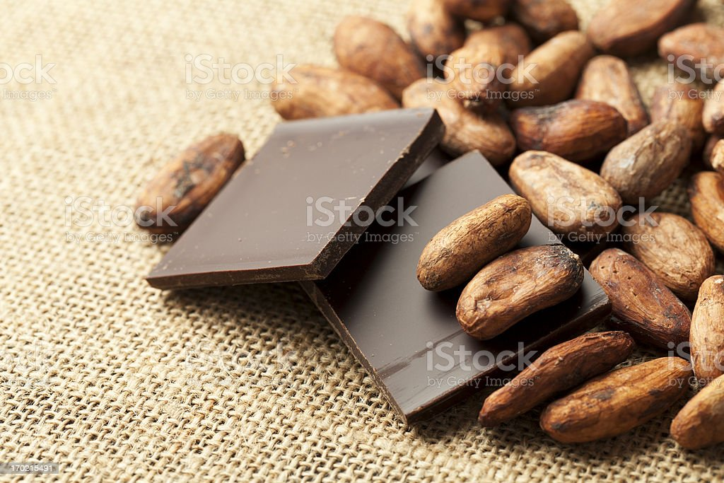 Cocoa Bean in with Chocolate royalty-free stock photo