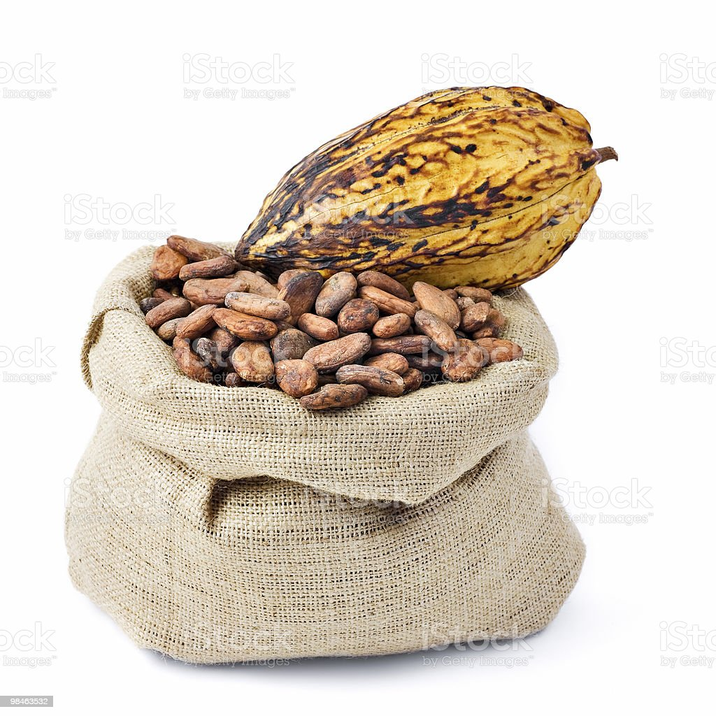 Chicco di cacao foto stock royalty-free