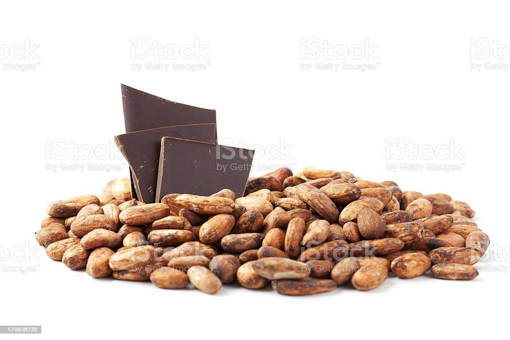Cocoa Bean with Chocolate royalty-free stock photo