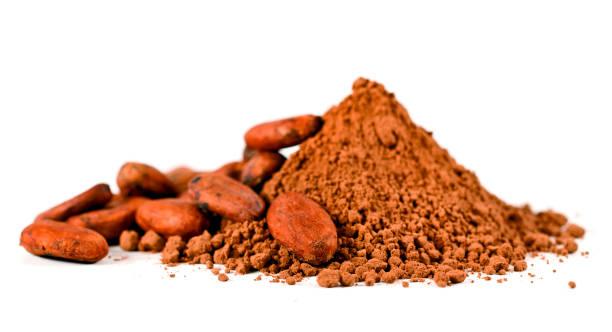 kakaobönor och hög kakaopulver - stålpenna bildbanksfoton och bilder