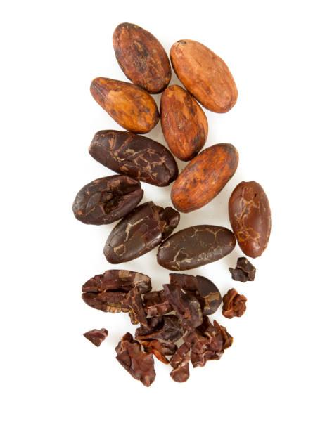 kakaobönor och nibs isolerade - stålpenna bildbanksfoton och bilder
