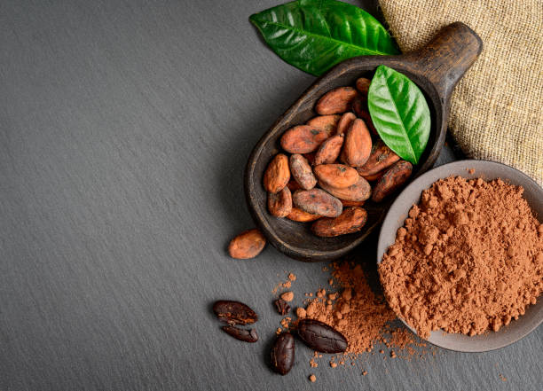Cocoa beans and powder in old wooden bowl with green leaves Cocoa beans in wooden bowl with green leaves , cocoa powder in bowl on dark stone background with copy space theobroma stock pictures, royalty-free photos & images