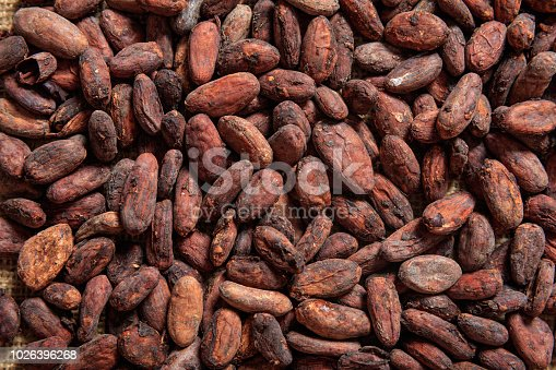 Cocoa beans full background