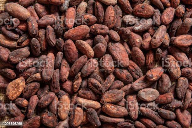 Cacao Bonen Als Achtergrond Stockfoto en meer beelden van Achtergrond - Thema