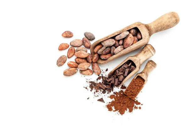 kakaobönor, choklad spån och kakaopulver - stålpenna bildbanksfoton och bilder