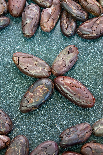 Cocoa Beans in a Star stock photo