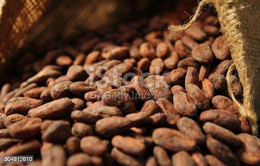 istock Cocoa Beans - Into Open Bag 504912610
