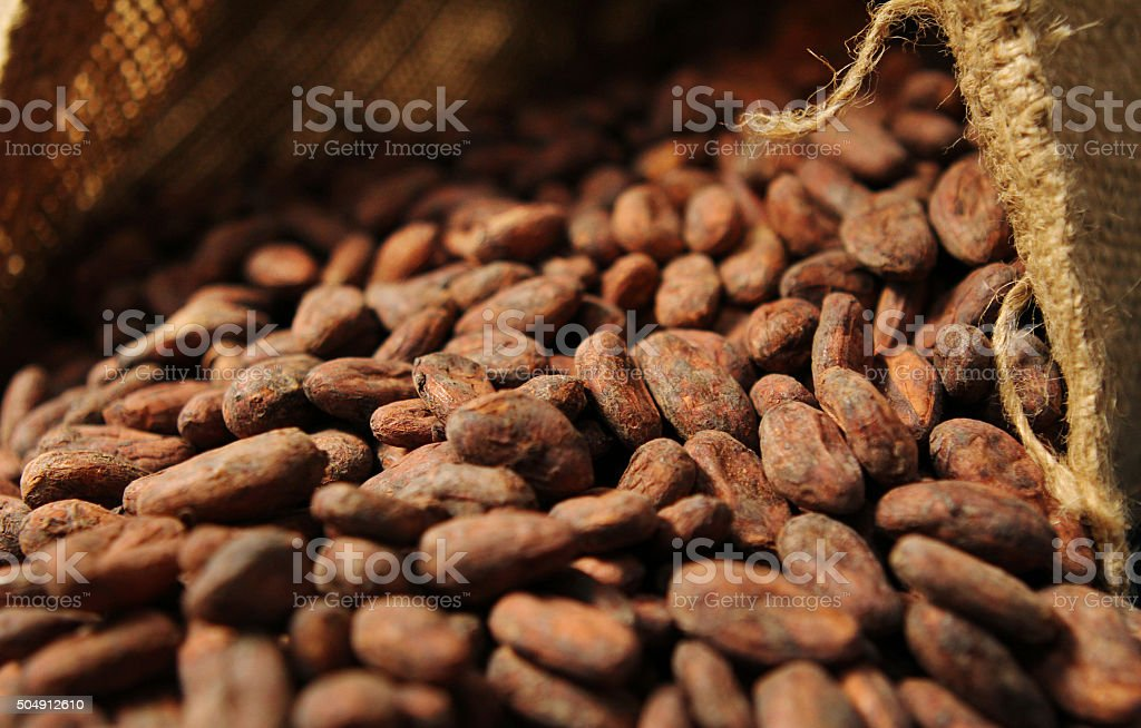 Cocoa Beans - Into Open Bag stock photo