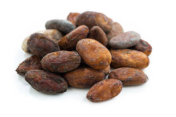 cocoa beans on white background, isolated cocoa beans on white background, isolated on white cocoa bean stock pictures, royalty-free photos & images