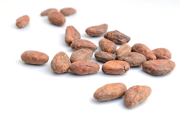 Cocoa beans on white background Cocoa beans on the white background. Shallow DOF. cocoa bean stock pictures, royalty-free photos & images