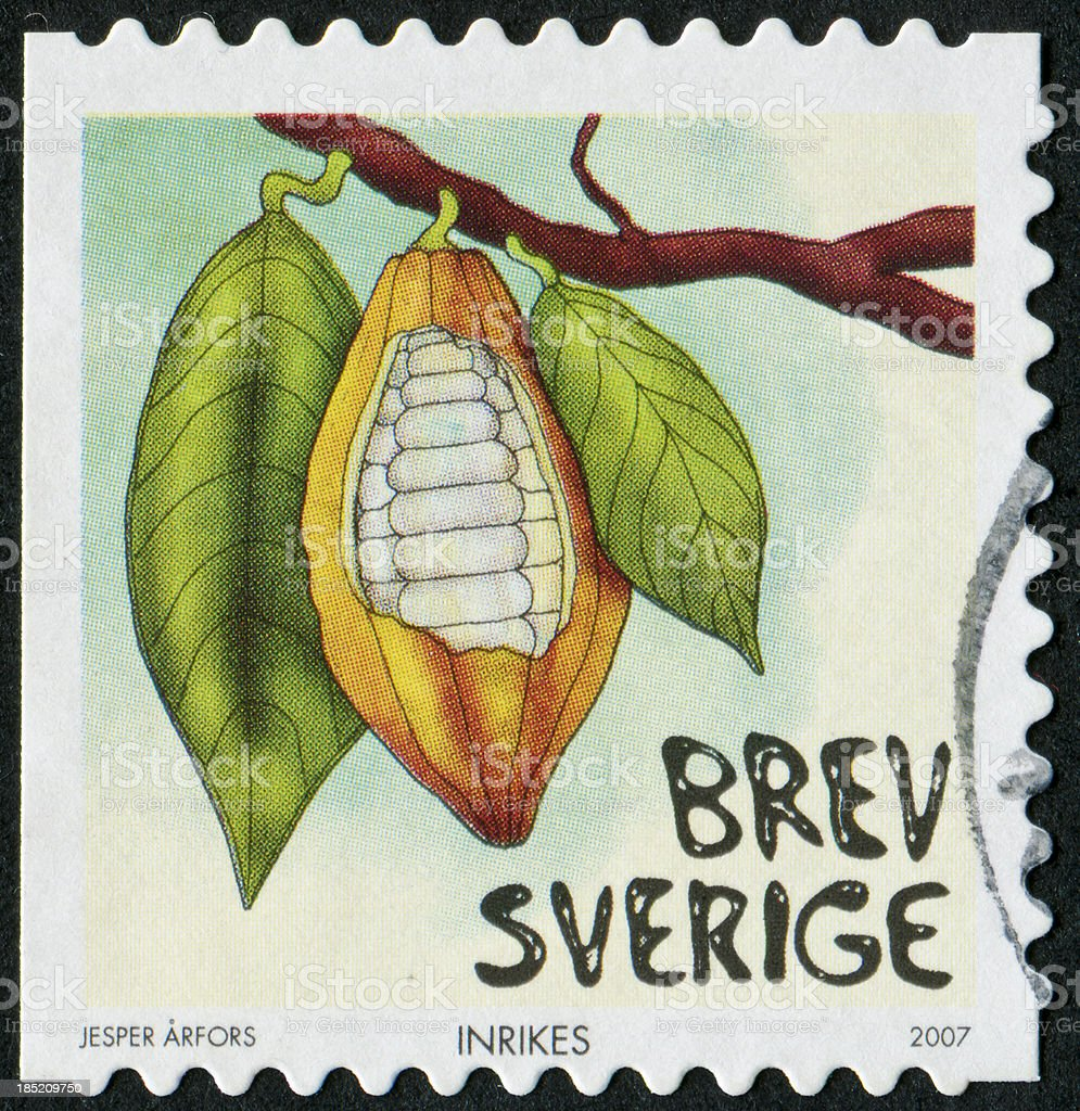 Cocoa Beans Stamp royalty-free stock photo