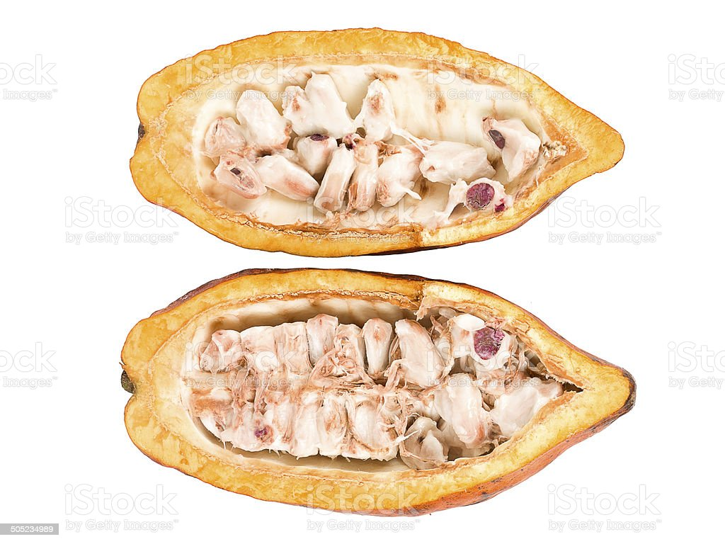 Cocoa Fruta; Alimento - foto de stock