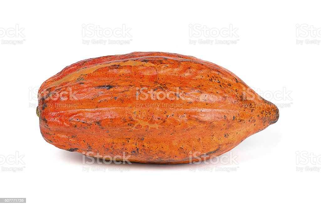 Cocoa fruit - Foodstuff stock photo