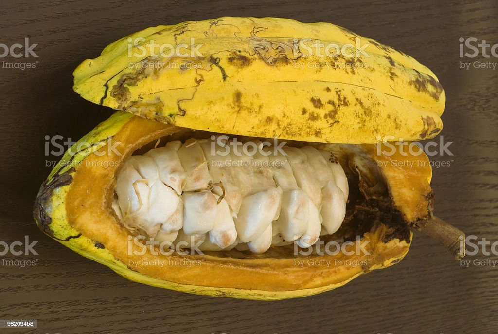 Cocoa fruit with beans royalty-free stock photo