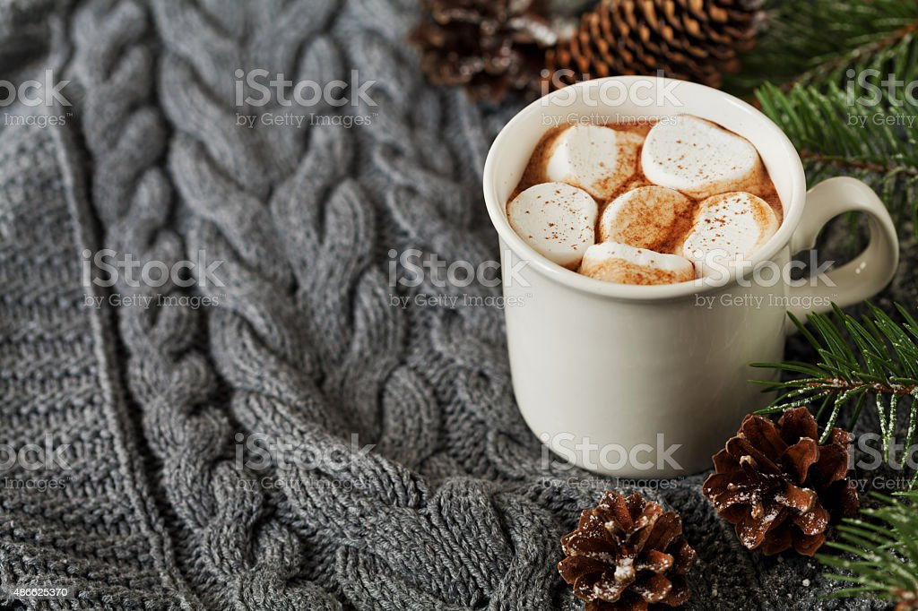 cocoa or hot chocolate with marshmallows, copy space for text stock photo