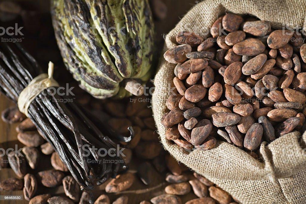 Cocoa pod and bean royalty-free stock photo