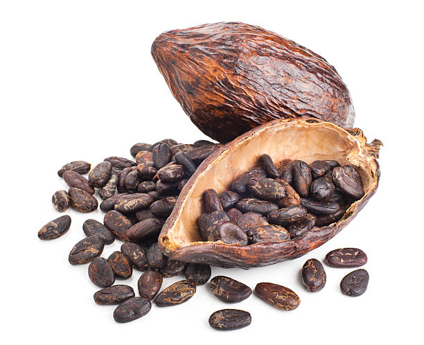 Royalty Free Cocoa Bean Pictures, Images And Stock Photos