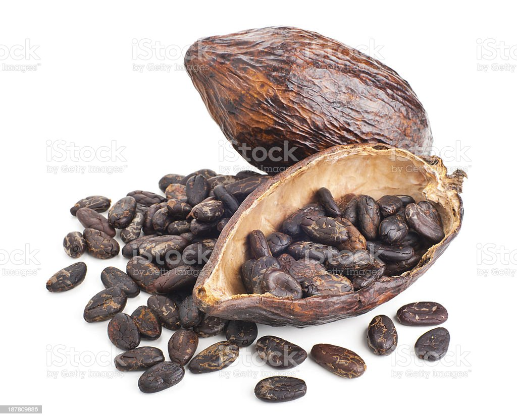 cocoa pod and beans isolated on a white stock photo