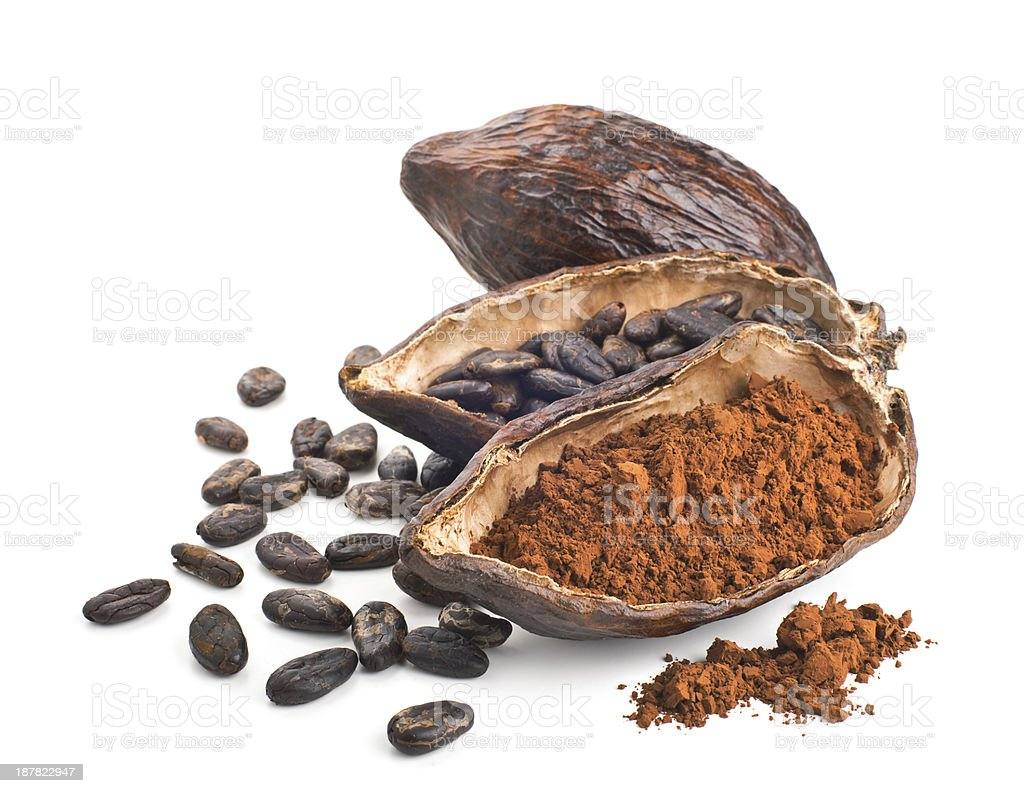 Cocoa pod, beans and powder isolated on a white stock photo