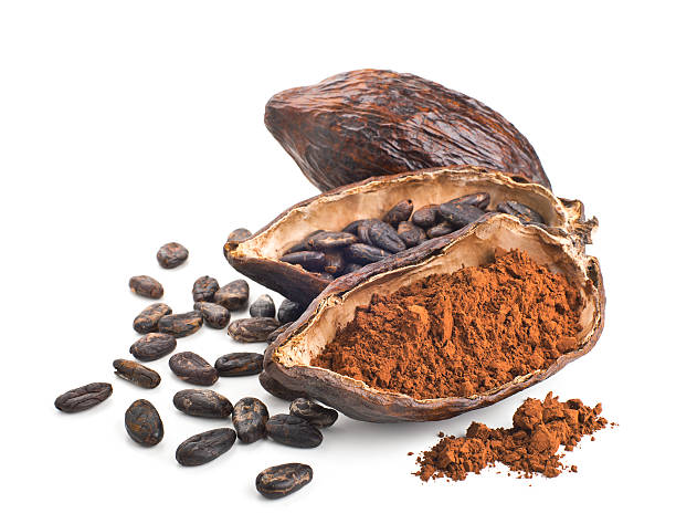 cocoa pod, beans and powder isolated on a white - cacaovrucht stockfoto's en -beelden