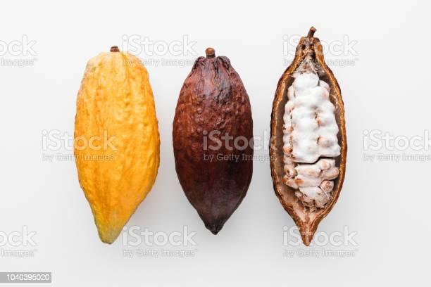 Cacao Pod Stockfoto en meer beelden van Begrippen
