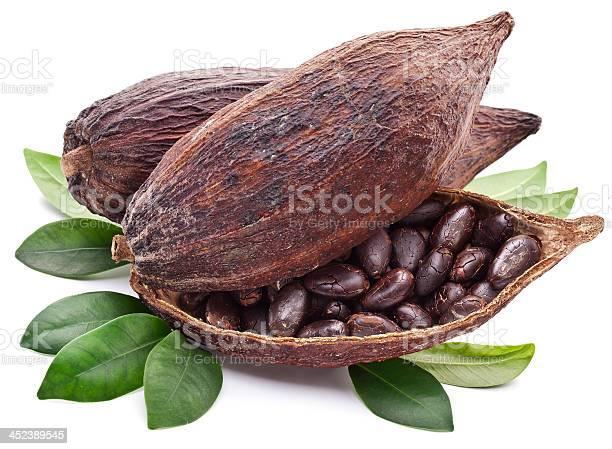 Cocoa Pod Stockfoto en meer beelden van Biologisch