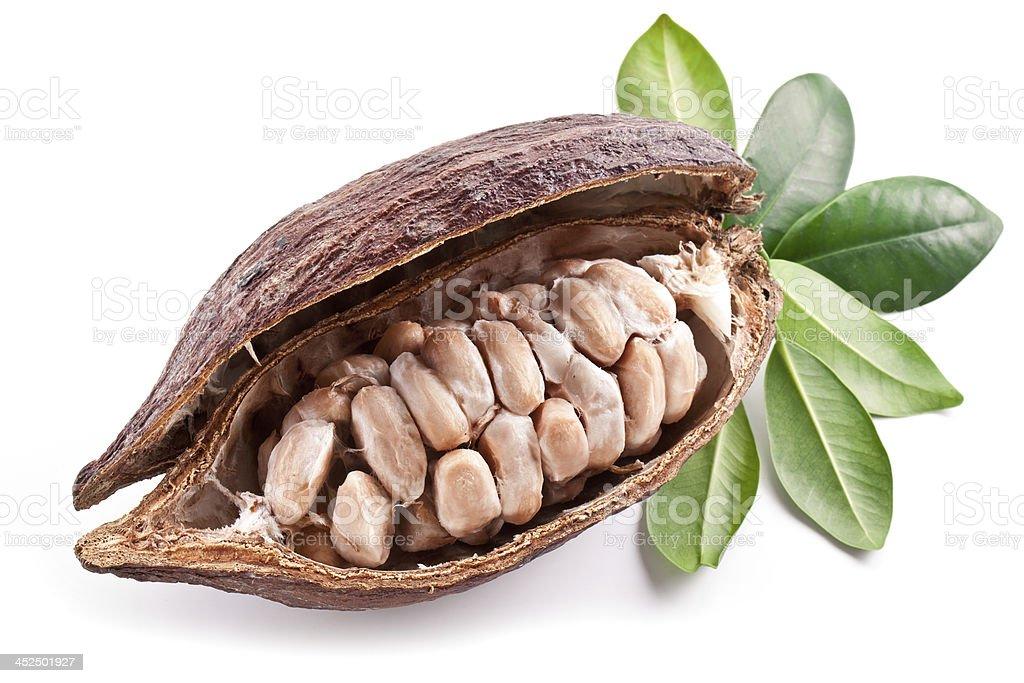 Cocoa pod. stock photo