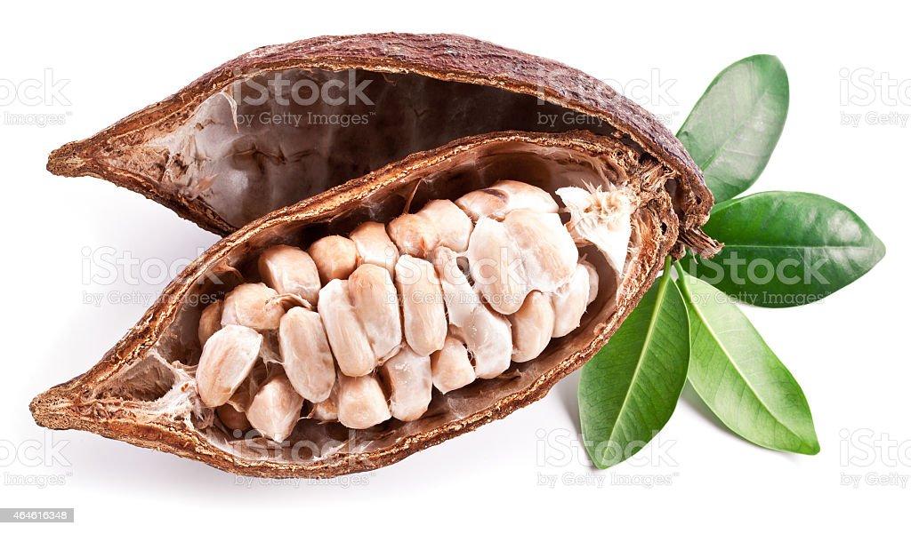 Cocoa pod - Royalty-free 2015 Stockfoto