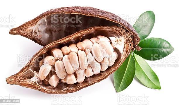 Cocoa Pod Stockfoto en meer beelden van 2015