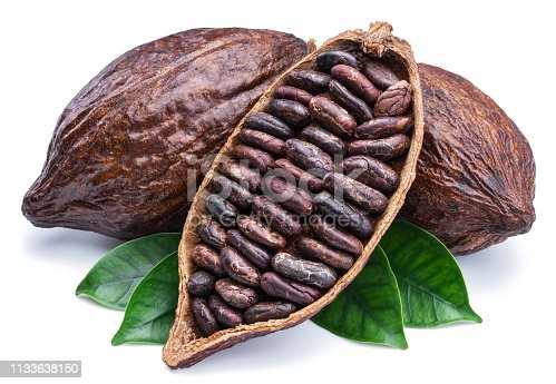 Cocoa pods and cocoa beans - chocolate basis on a white background.