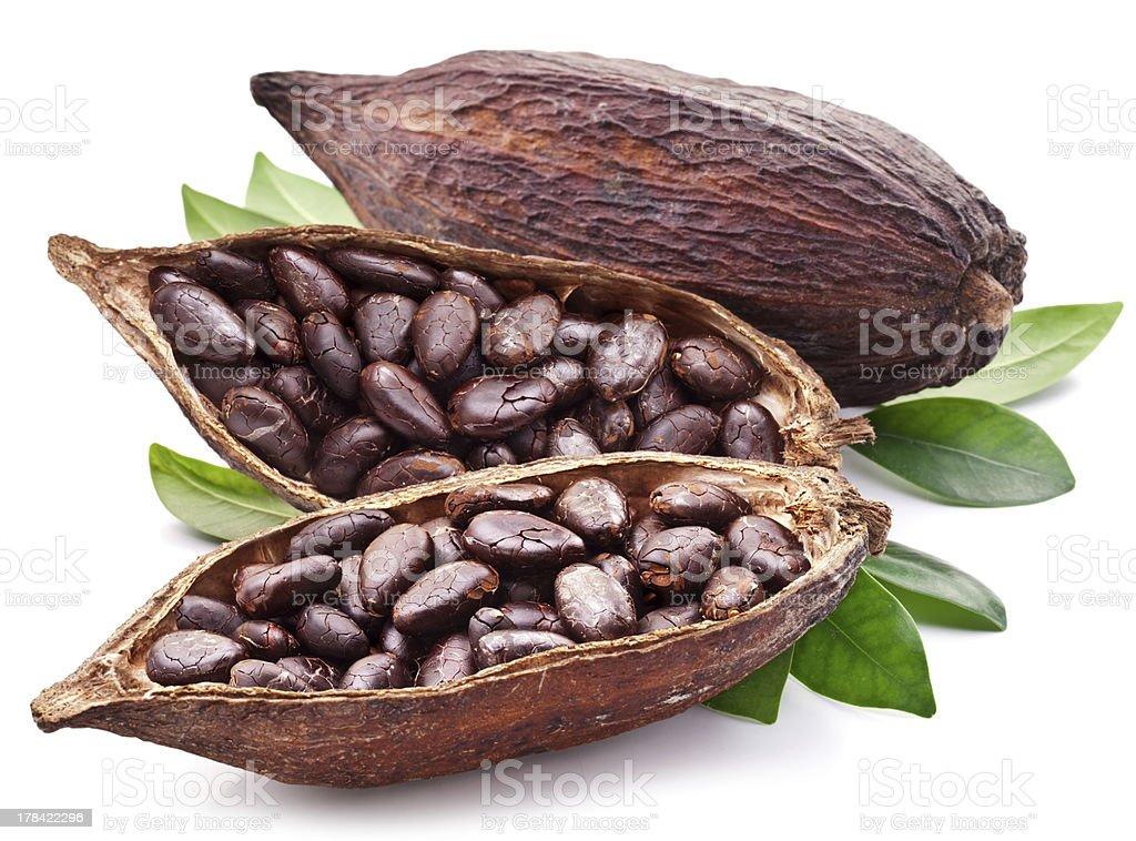 Estaciones de cacao - foto de stock