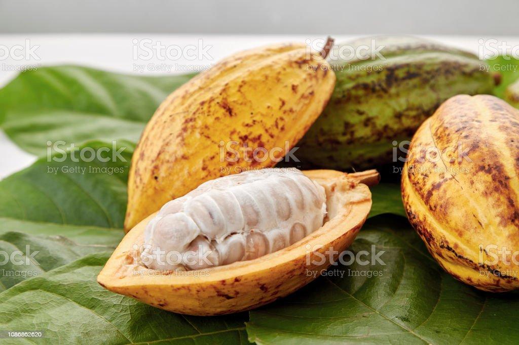 Cacao peulen met cacao blad op een witte achtergrond - Royalty-free Azië Stockfoto