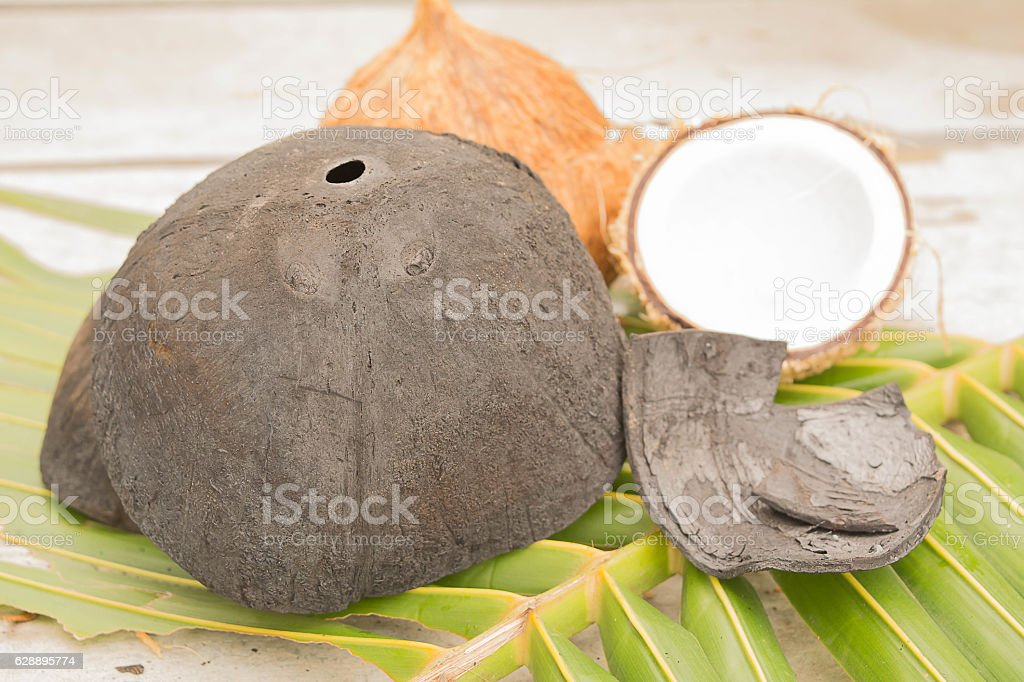 Coconut Activated Charcoal stock photo