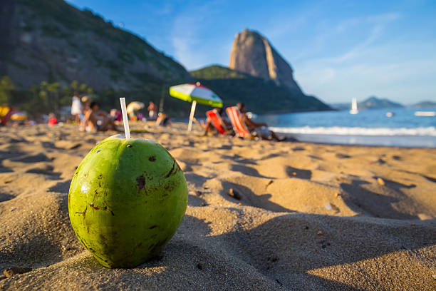 Coconut and beach in Rio de Janeiro Coconut and beach in Rio de Janeiro Brazil lagoa rio de janeiro stock pictures, royalty-free photos & images