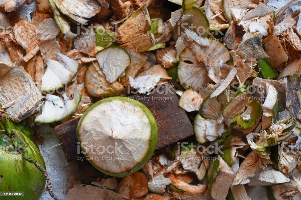 Coconut and coconut shell background - Royalty-free Abstract Stock Photo