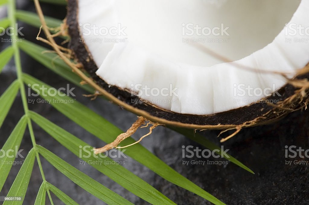 coconut and palm leaf. exotic scene royalty-free stock photo