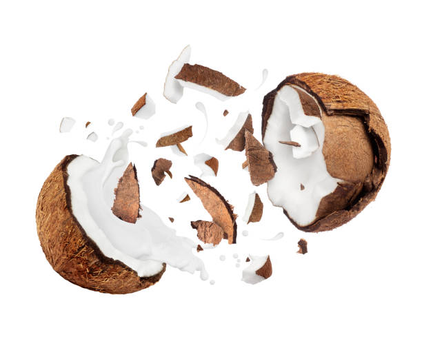 Coconut broken in the air into two halves with milk splashes stock photo